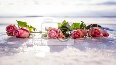 Rose przedmioty na lodzie
