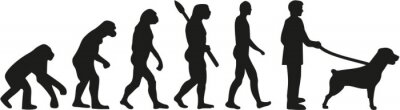 Rottweiler ewolucja