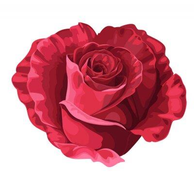 Naklejka Róża w kształcie serca na Walentynki