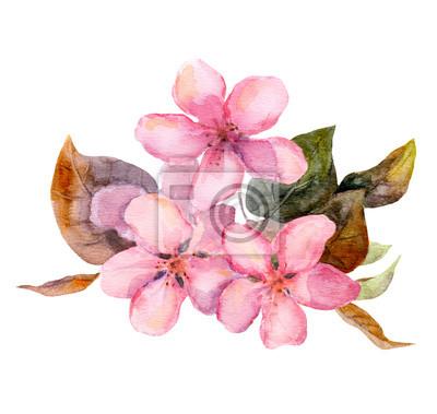 Różowe kwiaty drzew owocowych - jabłko, wiśnia, śliwa, sakura