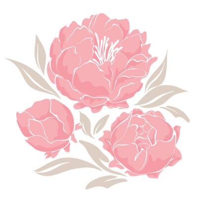 Naklejka Różowe piwonie