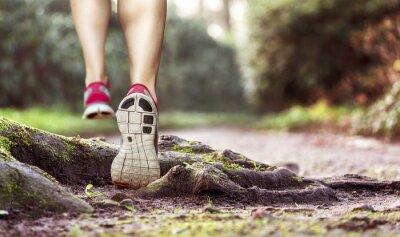 Naklejka Runner wycieczki podczas pracy w las