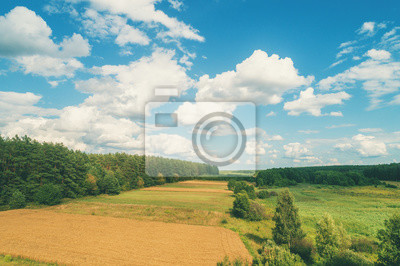 Rural landscape with a beautiful blue cloudy sky and wheat field. The countryside landscape. View from above