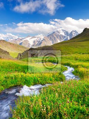 Rzeka na boisku. Piękny krajobraz lato