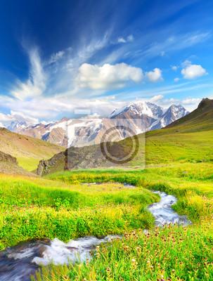 Rzeka na polu górskich. Piękny krajobraz lato