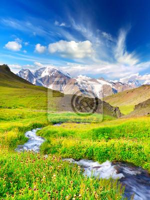 Rzeka na polu górskich w sezonie letnim