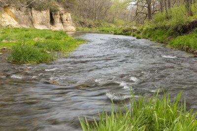 Naklejka Rzeka Na Wiosnę