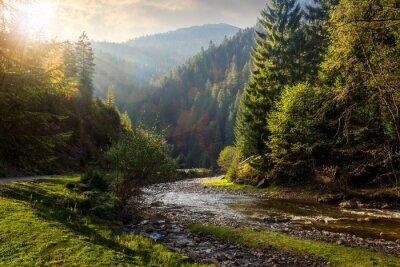 Naklejka Rzeka w górach las