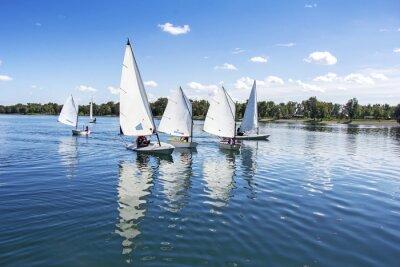 Naklejka Sailing on the lake