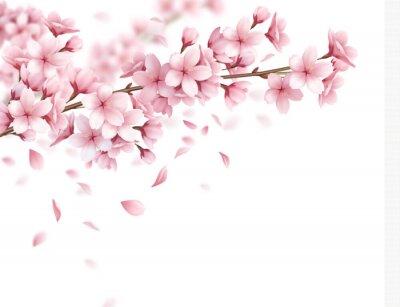 Naklejka Sakura Realistic Background