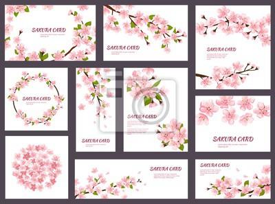 Naklejka Sakura wektor kwiat wiśni kartki z wiosennych róż kwitnących kwiatów ilustracja japoński zestaw zaproszenia ślubne kwitnienia szablonu dekoracji na białym tle
