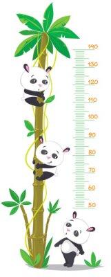 Naklejka Ściana metr z palmy i trzech zabawnych pand