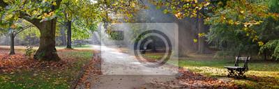 Naklejka Ścieżka w parku jesienią. Krajobraz jesienny.