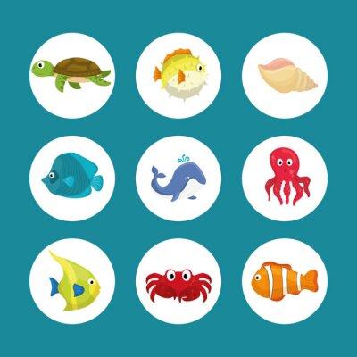 Naklejka Sea fauna kreskówki