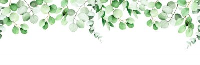 Naklejka seamless border, frame of eucalyptus leaves and branches. watercolor drawing green leaves of eucalyptus on white background. print for wedding, invitations, congratulations. web banner