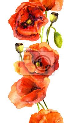 Seamless powtórzyła kwiatowy granicy ramki z kwitnących kwiatów maku. Akwarele namalowany pasek