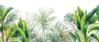 Naklejka Seamless watercolor border with green tropical foliage.