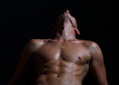 Naklejka Sensual sexy gay. Naked man bare torso.