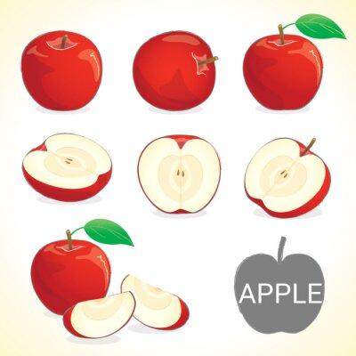 Naklejka Set of apple fruit in various styles vector format