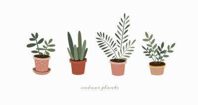 Naklejka Set of indoor plants in flower pots. Home green plants of various shapes. Scandinavian style illustration, home decor. Vector illustration on white isolated background.