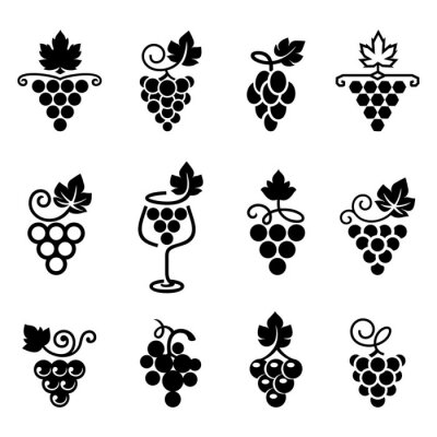 Naklejka Set of leaves, bunch of grapes in simple flat style. Logos, icons for wine design concept, wine or juice labels, grape seed oil,  winery, viticulture, healthy vegan food etc. Vector illustration.