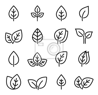 Naklejka set of line leaf icons