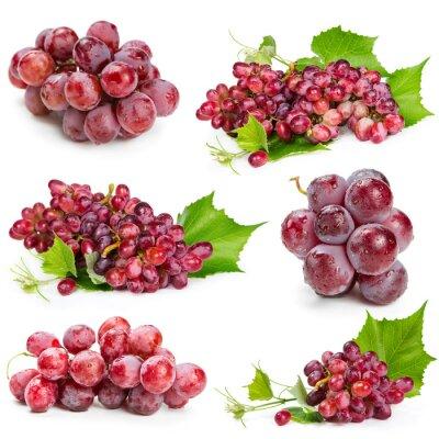 Naklejka Set of red grapes