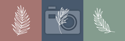 Naklejka Set of tropical leaves. Outline Palm leaf and Olive Branch In a Modern Minimalist Style. Vector Illustration. For printing on t-shirt, Web Design, beauty Salons, Posters, creating a logo and other