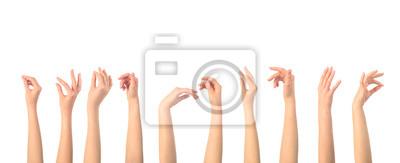 Naklejka set of womens hand hold something isolated