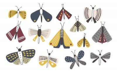 Naklejka Set zmrok barwiący doodle ćma odizolowywający na białym tle. Kolekcja motyle Nights ręcznie rysowane. Ilustracja kolorowy wektor.