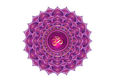Naklejka seventh chakra Sahasrara logo template. Crown chakra symbol, Purple lotus sacral sign meditation, yoga gold luxury round mandala icon. Gold symbol Om in the center, vector isolated on white background