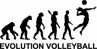 Siatkówka Evolution