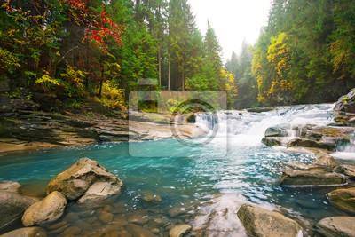 Naklejka Siklawa na halnej rzece w lesie