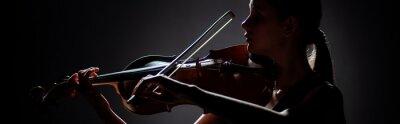 Naklejka silhouette of female musician playing on violin on dark stage, panoramic orientation
