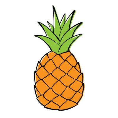 Naklejka Single pineapple on white background. Vector Graphics.