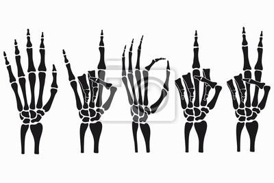 Naklejka Skeleton hand gestures set. Collection of hand-drawn bones signs. Vector illustration.