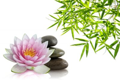 Naklejka Skład Zen