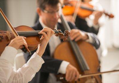 Skrzypek wykonując z orkiestrą