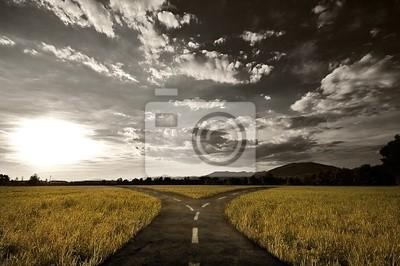 Naklejka Skrzyżowanie dróg