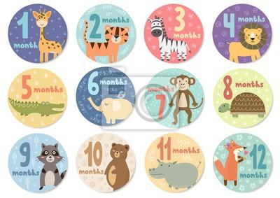 Naklejka Śliczne dwanaście miesięcy naklejki ze zwierzętami dla niemowląt