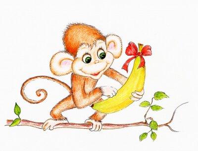 Naklejka Słodkie małpa