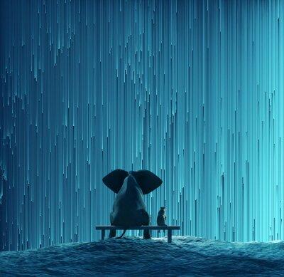 Naklejka słoń i pies patrząc na gwiazdy Deszczu