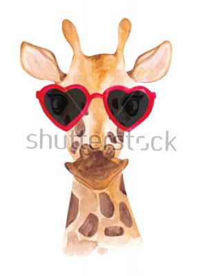 Naklejka Śmieszna akwareli żyrafa w okularach przeciwsłonecznych