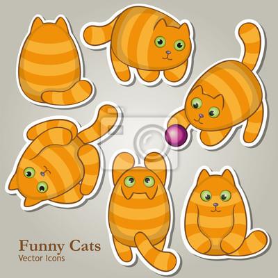 Śmieszne Koty zestaw ikon wektorowych