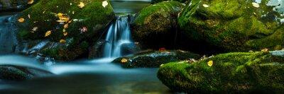 Naklejka Smoky Mountain stream z omszałych skał