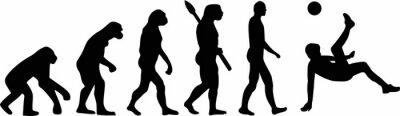 Soccer Evolution Bicycle Kick
