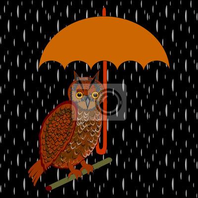 Sowa z parasolem w deszczu