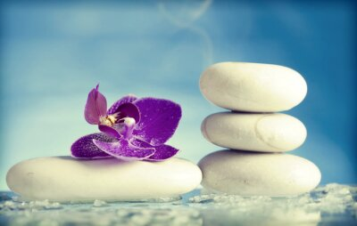 Naklejka Spa still life with pink orchid and white zen stone