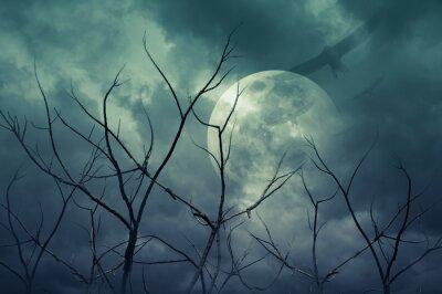 Naklejka Spooky forest with full moon, dead trees, Halloween background