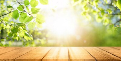 Naklejka Spring beautiful background with green juicy young foliage and empty wooden table in nature outdoor. Natural template with Beauty bokeh and sunlight.